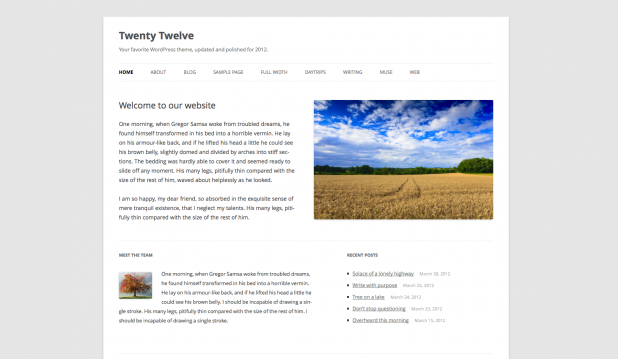 WordPress Standard Theme Twenty Twelve