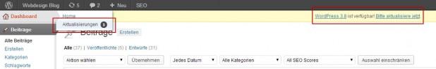WordPress automatisch aktualisieren