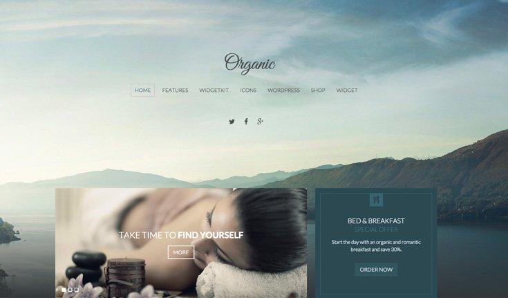 Organic WordPress theme